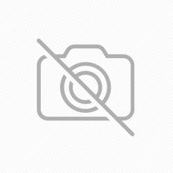 6387 DISCO DE FIXACAO DA POLIA - SAB100